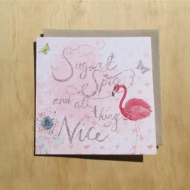 Sugar and Spice baby girl arrival card